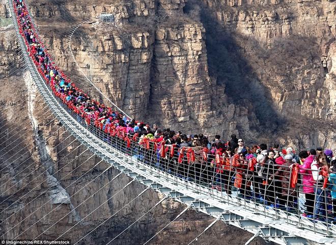 Cảnh tượng nhìn thôi đã bủn rủn chân tay: Cả trăm khách du lịch chen nhau trên cây cầu kính trong suốt dài nhất thế giới - Ảnh 1.