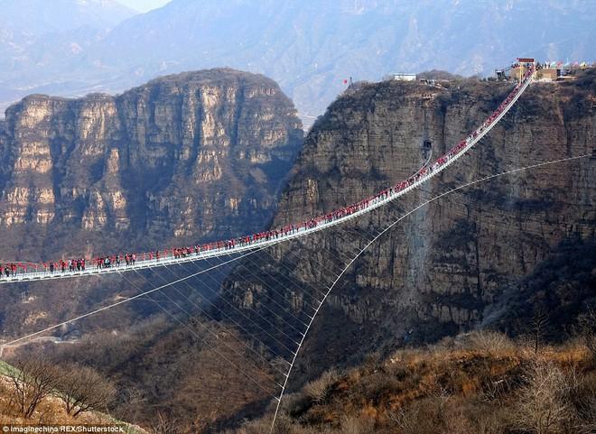 Cảnh tượng nhìn thôi đã bủn rủn chân tay: Cả trăm khách du lịch chen nhau trên cây cầu kính trong suốt dài nhất thế giới - Ảnh 4.