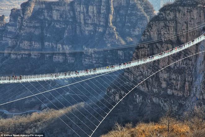 Cảnh tượng nhìn thôi đã bủn rủn chân tay: Cả trăm khách du lịch chen nhau trên cây cầu kính trong suốt dài nhất thế giới - Ảnh 5.