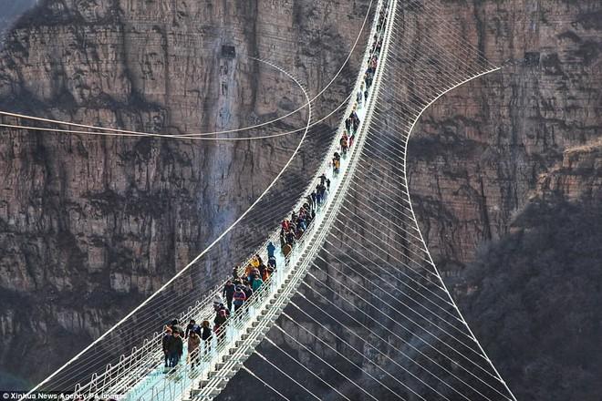 Cảnh tượng nhìn thôi đã bủn rủn chân tay: Cả trăm khách du lịch chen nhau trên cây cầu kính trong suốt dài nhất thế giới - Ảnh 7.