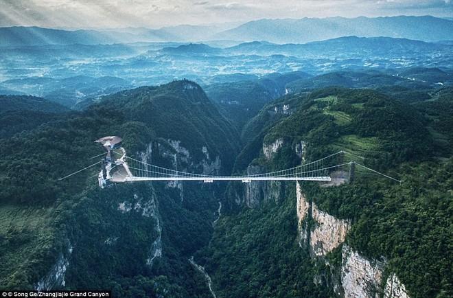 Cảnh tượng nhìn thôi đã bủn rủn chân tay: Cả trăm khách du lịch chen nhau trên cây cầu kính trong suốt dài nhất thế giới - Ảnh 9.