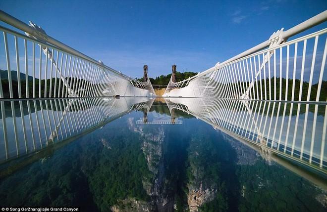 Cảnh tượng nhìn thôi đã bủn rủn chân tay: Cả trăm khách du lịch chen nhau trên cây cầu kính trong suốt dài nhất thế giới - Ảnh 10.