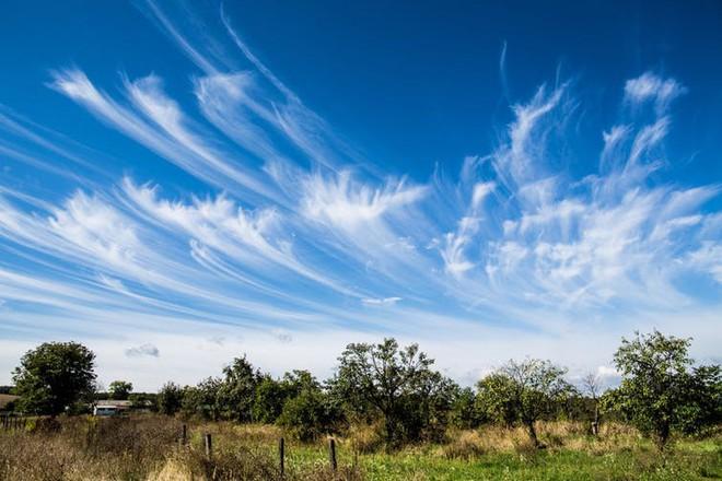 Không cần xem dự báo, đám mây kỳ dị này có thể tiết lộ hiểm họa từ trên không - Ảnh 4.