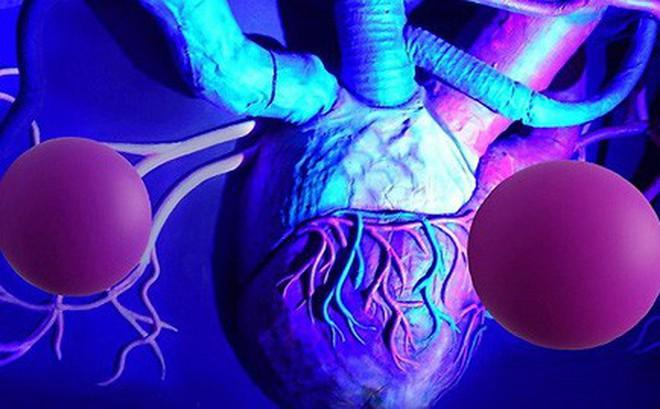 Phát hiện cơ quan mới trên cơ thể người, mở ra hi vọng chữa tận gốc bệnh ung thư