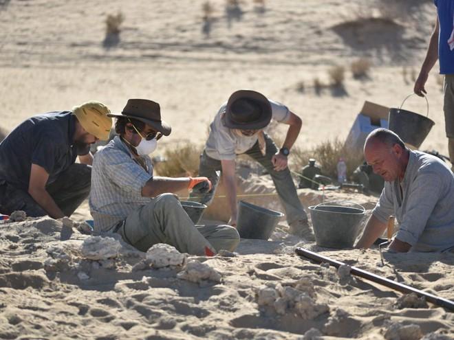 Hóa thạch 85.000 năm tuổi ở Saudi Arabia ẩn chứa bí mật mới của loài người - Ảnh 3.