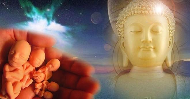 Cầu xin Đức Phật cứu con trai mắc bạo bệnh, người mẹ nhận ra quy luật không thể tránh khỏi - Ảnh 2.