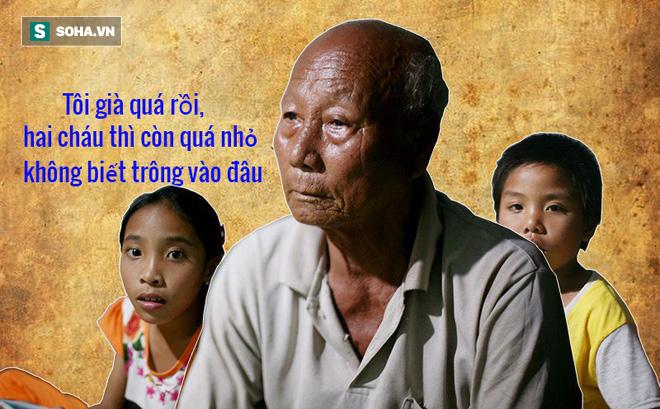 Khóc ở Lý Sơn: Ông nội giả cha, nước mắt mặn mòi đã cạn khô