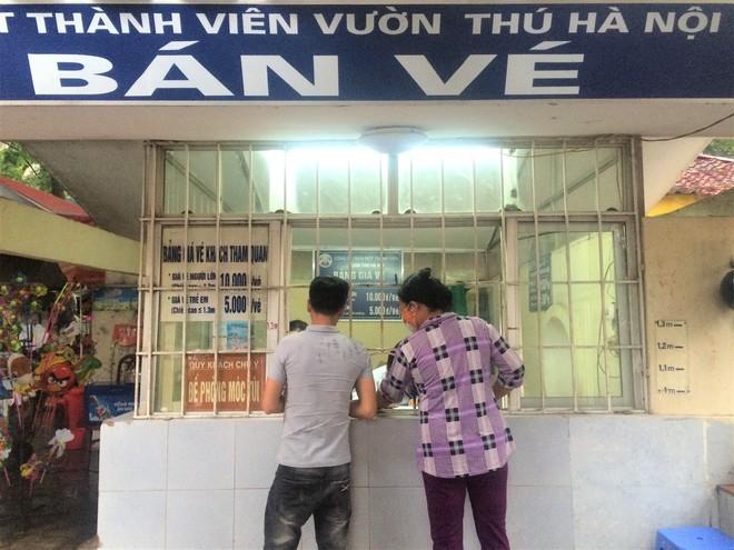 Bế con nhỏ đội mưa đến các điểm vui chơi ở Hà Nội trong ngày giỗ Tổ Hùng Vương - Ảnh 6.