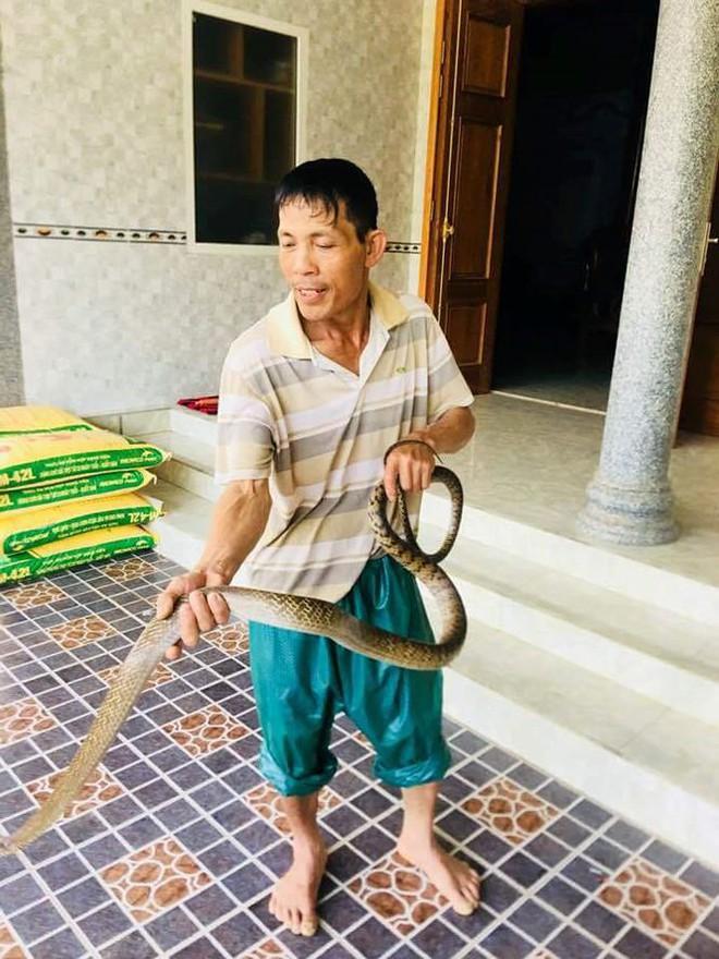 Ngư dân Nghệ An chèo thuyền bắt rắn hổ trâu khủng, nặng 3kg - Ảnh 1.