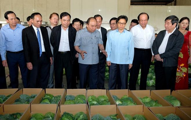 Thủ tướng đối thoại với nông dân - Ảnh 3.