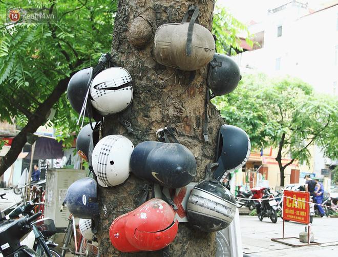 Chuyện về cụ ông Hà Nội phía sau cây cổ thụ treo hàng chục chiếc mũ bảo hiểm sứt mẻ trên đường Trần Hưng Đạo - Ảnh 6.