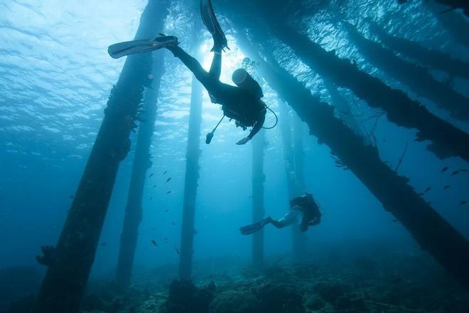 Từ tàu ngầm đầu tiên của TG đến hành trình giải mã đại dương dưới áp suất phá vỡ lồng ngực - Ảnh 5.
