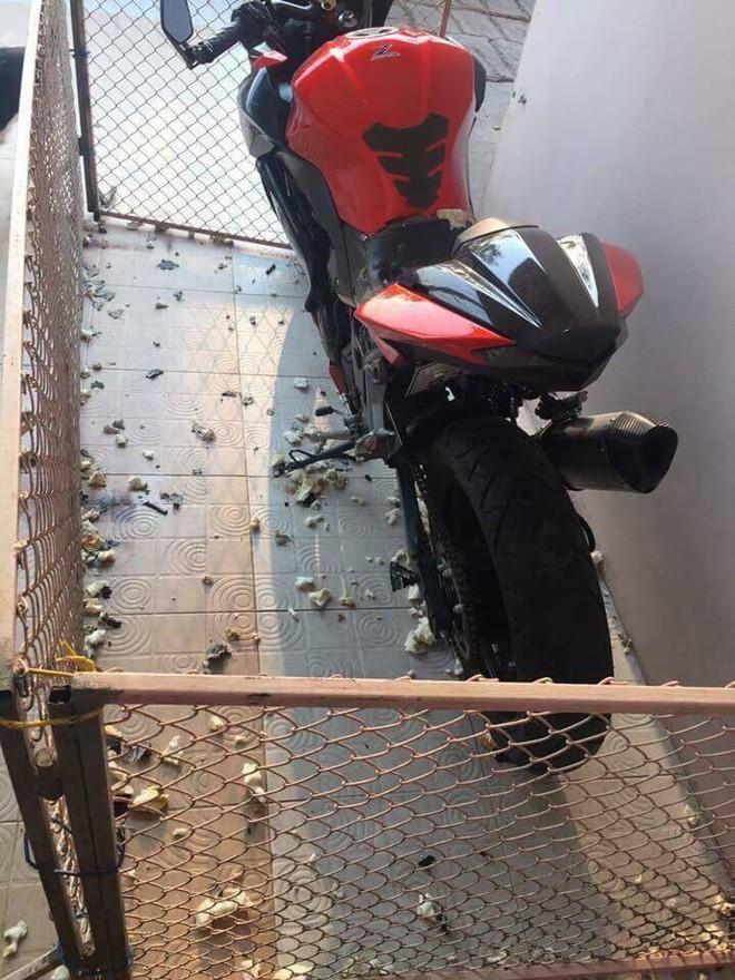 Quây xe trong rào sắt, khổ chủ dở khóc dở cười vì vẫn bị đàn chó... phá tan xe - Ảnh 1.