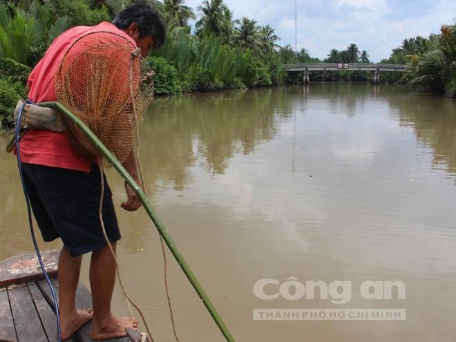 'Vua' săn cá ngát trên sông Hàm Luông - Ảnh 2.