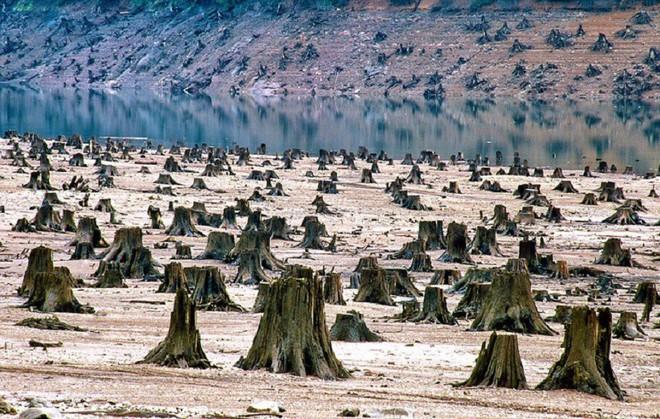 Những hình ảnh minh chứng con người đang tiễn Trái Đất đến ngày tận thế - Ảnh 21.