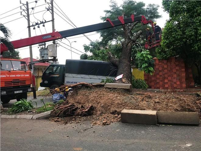 Mưa kèm gió mạnh ở Sài Gòn làm sập mái nhà, cây xanh ngã đè xe tải - Ảnh 3.