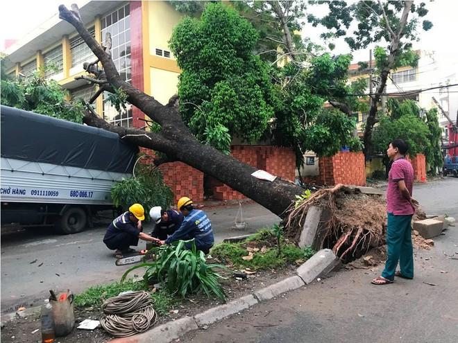 Mưa kèm gió mạnh ở Sài Gòn làm sập mái nhà, cây xanh ngã đè xe tải - Ảnh 2.