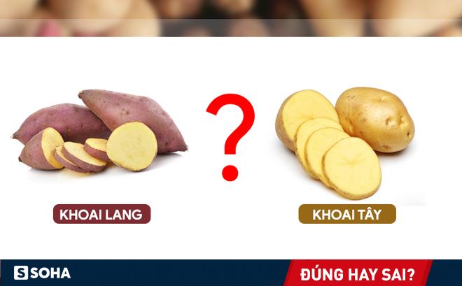 """Khoai lang tốt hơn khoai tây: Nhiều người sẽ tỉnh ngộ và ăn khoai """"thông minh hơn"""""""