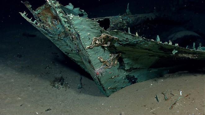 """Phát hiện """"nghĩa địa của những con tàu chìm ở vùng biển sâu nhất vịnh Mexico - Ảnh 12."""