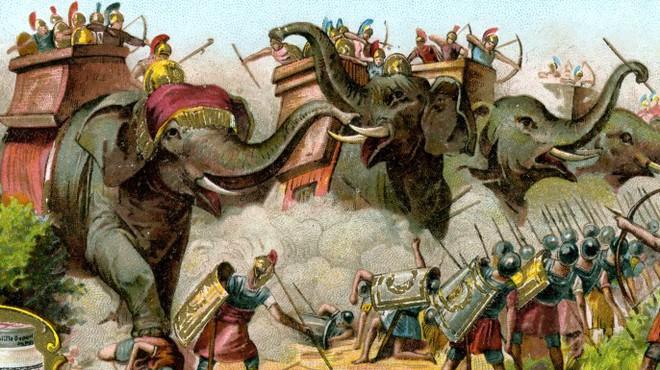 Những con voi trong chiến tranh: Cỗ xe tăng đáng sợ của giới quân sự cổ đại - Ảnh 5.