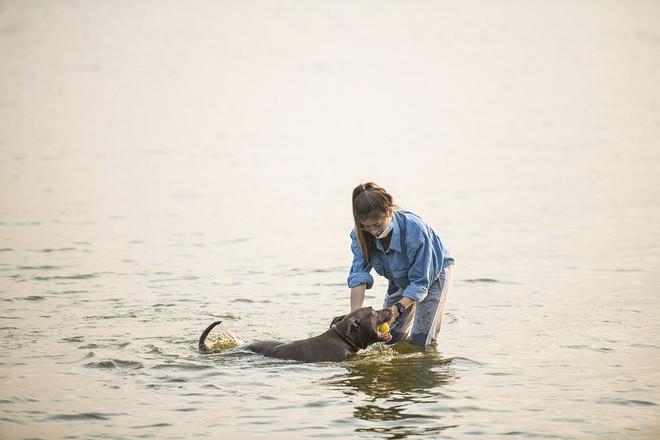 Nhiều người đưa chó cưng ra Hồ Tây cùng tắm để giải nhiệt ngày nắng nóng - Ảnh 11.