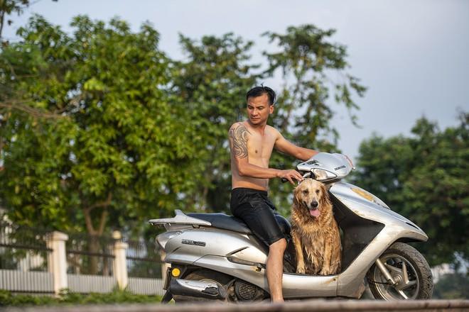 Nhiều người đưa chó cưng ra Hồ Tây cùng tắm để giải nhiệt ngày nắng nóng - Ảnh 8.
