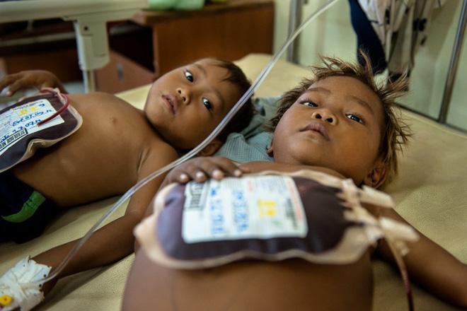 12 triệu người Việt, riêng Hà Nội nghi ngờ 10% học sinh mang gen bệnh tan máu bẩm sinh - Ảnh 1.