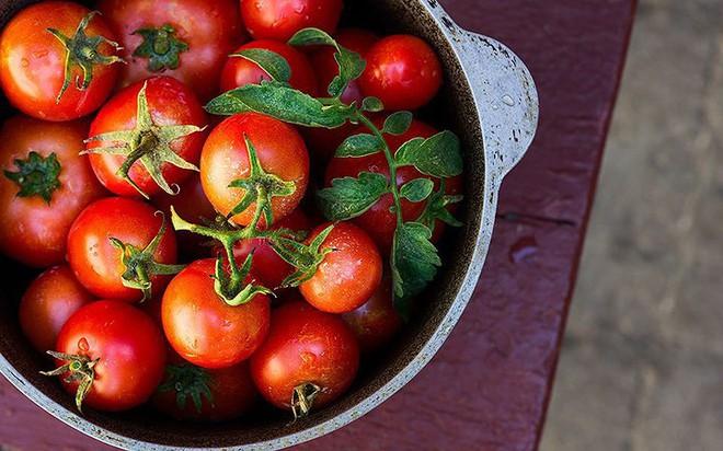 Ăn nhiều cà chua không tốt như mọi người vẫn nghĩ - Ảnh 4.
