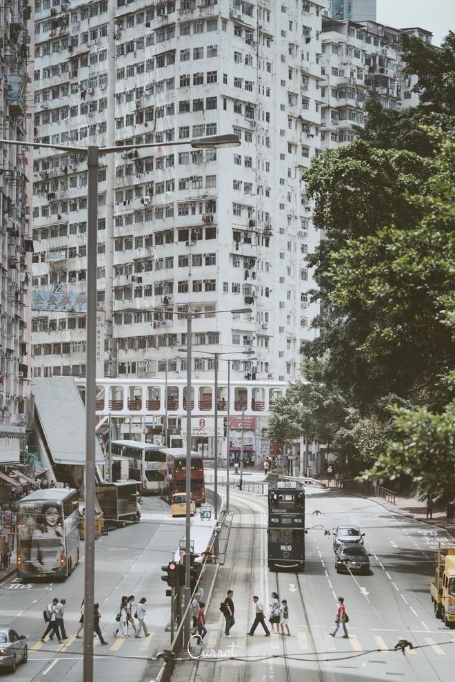 Bộ ảnh: Ngắm nhìn vẻ đẹp hoài cổ của những chiếc xe điện trăm năm tuổi của Hongkong - Ảnh 3.