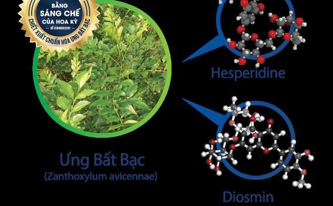 Dược liệu quý ngàn năm giúp bảo vệ tế bào gan