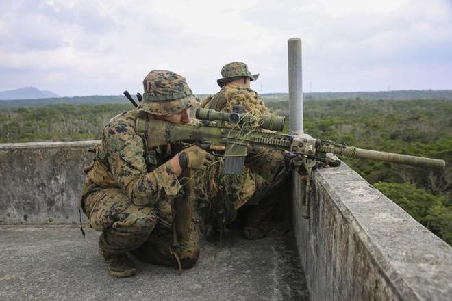 """Kỹ năng ẩn nấp và tác xạ của """"sát thủ vô hình"""" lính bắn tỉa Mỹ - Ảnh 14."""