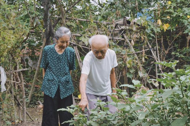 Bộ ảnh ông chải tóc, đọc thơ cho bà được chia sẻ nhiều nhất trong vòng 24 giờ và những tiết lộ phía sau  - Ảnh 1.