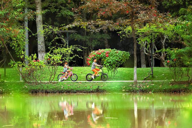 Ecopark được IPA trao tặng danh hiệu quốc tế về khu thành thị phức hợp tốt nhất Việt Nam 2018 - Ảnh 5.