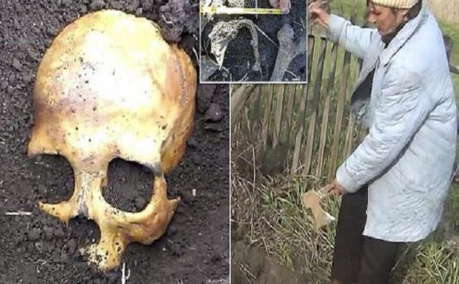 'Đào' được hộp sọ trong vườn, người đàn ông phát hiện sự thật kinh hoàng