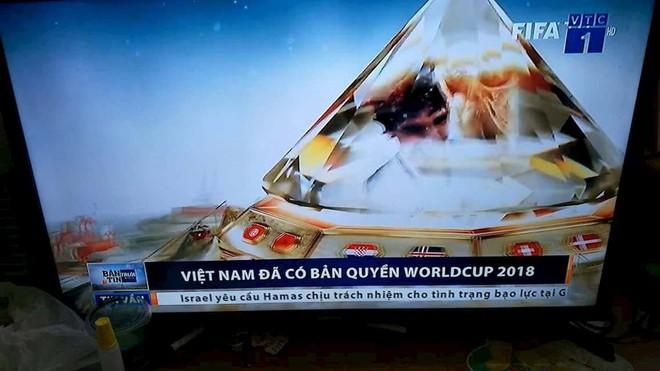 Rộ tin đồn đại gia BĐS góp tiền có VTV mua bản quyền World Cup 2018 - Ảnh 2.