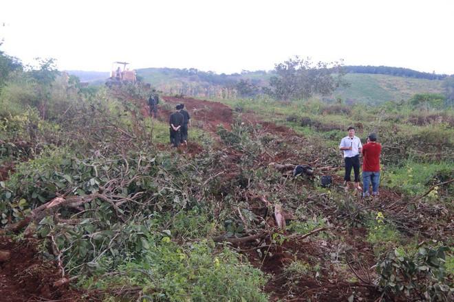 Xét xử phúc thẩm vụ nổ súng khiến 3 người chết, 13 bị thương do tranh chấp đất ở Đắk Nông - Ảnh 2.