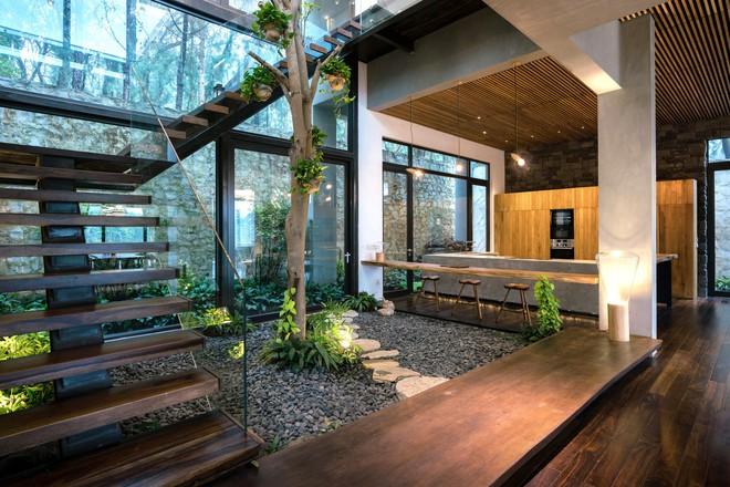 Độc đáo với biệt thự giữa đồi thông có bể bơi ngoài trời ở Vĩnh Phúc - Ảnh 4.