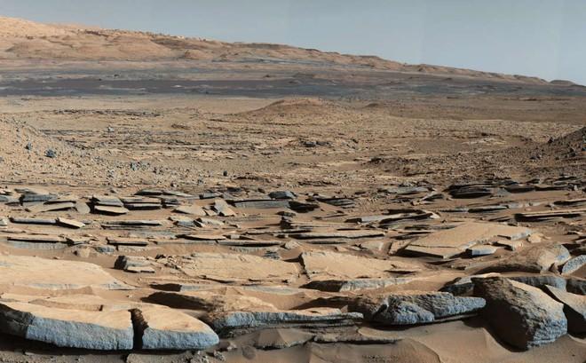 Báo cáo hết sức đắng: Có thể NASA đã phá hủy bằng chứng hiếm hoi về sự sống trên sao Hỏa - Ảnh 1.