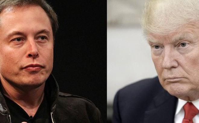 """Tesla, BMW vừa giúp Trung Quốc """"ghi bàn thắng mở tỉ số vào lưới Mỹ"""" và khôn khéo né được việc trở thành nạn nhân của chiến tranh thương mại"""