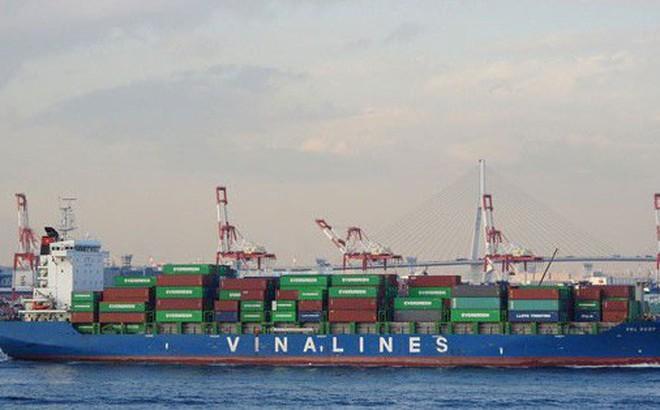 Báo lãi trước IPO, Vinalines có hấp dẫn nhà đầu tư?