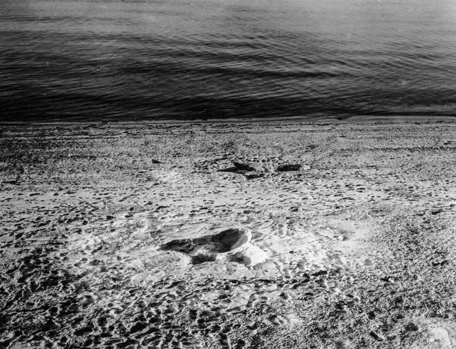 Rắn khổng lồ Nantucket 1937: Con quái vật biển gây rúng động giới khoa học, làm dân tình khiếp sợ xanh mặt hóa ra chỉ là... bong bóng đồ chơi - Ảnh 2.