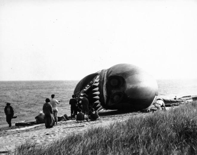 Rắn khổng lồ Nantucket 1937: Con quái vật biển gây rúng động giới khoa học, làm dân tình khiếp sợ xanh mặt hóa ra chỉ là... bong bóng đồ chơi - Ảnh 4.