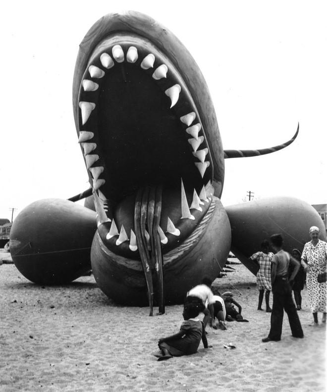 Rắn khổng lồ Nantucket 1937: Con quái vật biển gây rúng động giới khoa học, làm dân tình khiếp sợ xanh mặt hóa ra chỉ là... bong bóng đồ chơi - Ảnh 5.