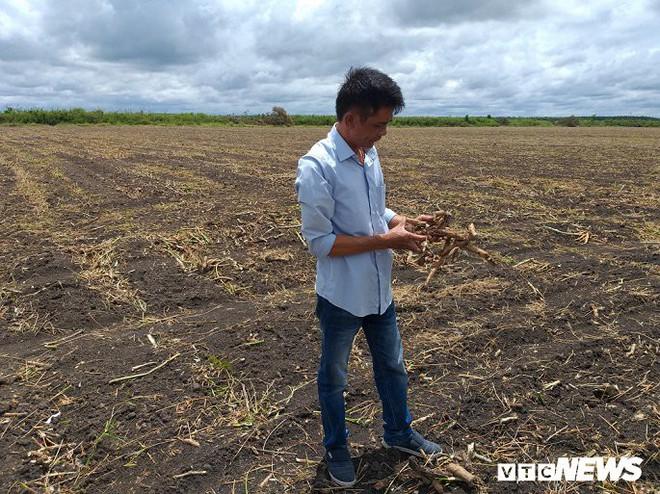 Chủ tịch huyện ở Tây Ninh bác tin người dân quỳ lạy trước nhà mình - Ảnh 2.