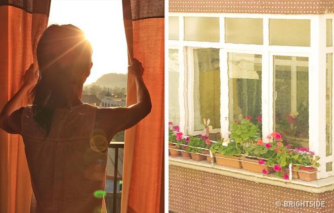 Không có điều hòa, đây là cách làm mát căn nhà trong ngày hè nắng nóng - Ảnh 1.