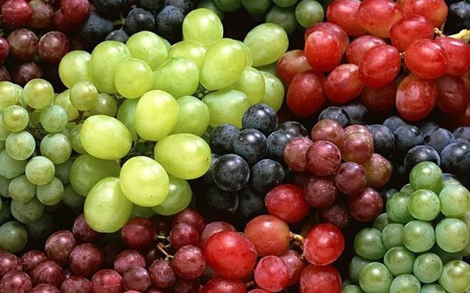 """Những loại thực phẩm giải độc và """"quét sạch"""" độc tố trong phổi - Ảnh 12."""