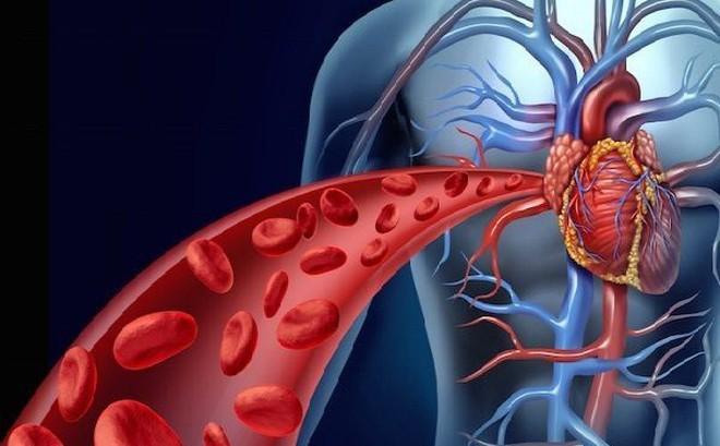 cải thiện mạch máu