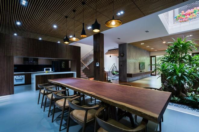 Mãn nhãn có ngôi nhà ngập ánh sáng, nội thất toàn bằng gỗ sang trọng - Ảnh 11.