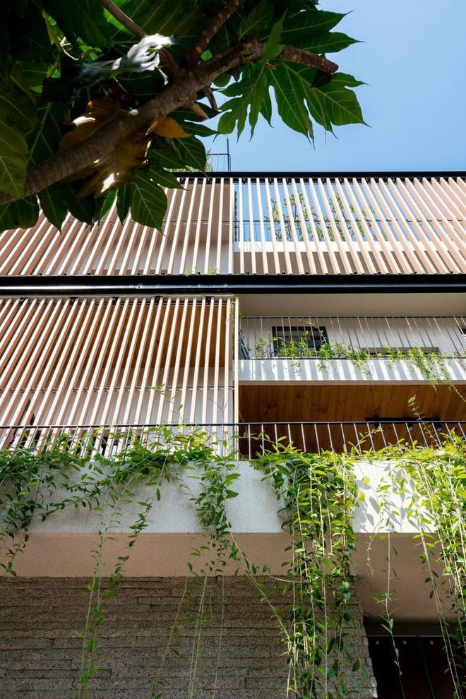 Mãn nhãn có ngôi nhà ngập ánh sáng, nội thất toàn bằng gỗ sang trọng - Ảnh 2.