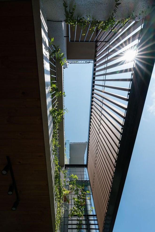 Mãn nhãn có ngôi nhà ngập ánh sáng, nội thất toàn bằng gỗ sang trọng - Ảnh 5.